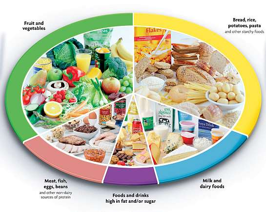 Arditor crucial dietary goals for type 2 diabetes crucial dietary goals for type 2 diabetes forumfinder Images