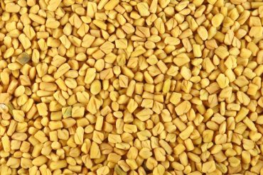 blood sugar control tip - fenugreek