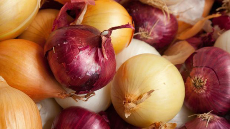 diabetes and onions