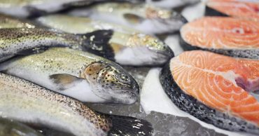 diabetes and fishes