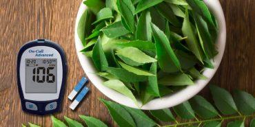 blood sugar control tip - neem