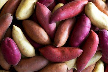 diabetes and sweet potatoes