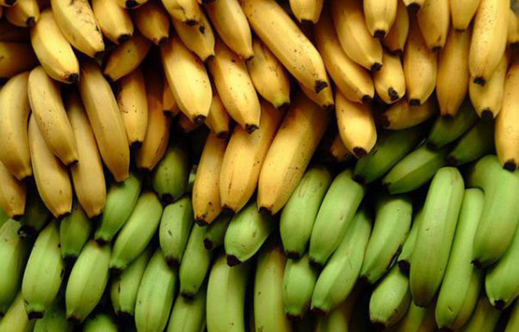 diabetes and banana