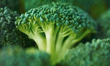 how does broccoli help diabetes