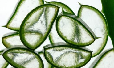 blood sugar control tip aloe vera