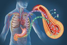 diabetes affect your pancreas