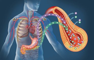 diabetes affect your pancreas