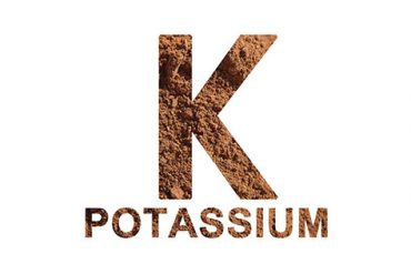 diabetes and potassium